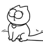 simons-cat1